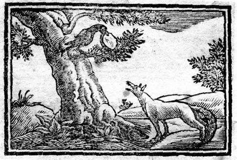 corbeau-renard