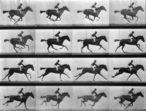 Le galop du cheval photographié par Eadweard Muybridge (1878)